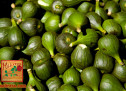 «Oρνός»!Το πρώτο φρούτο της άνοιξης